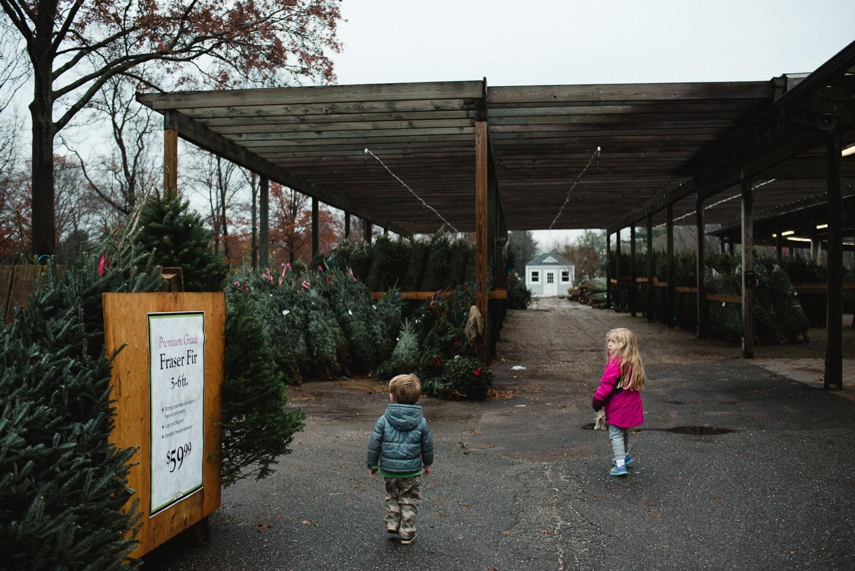 A boy and girl walk through the Christmas trees at Hicks Nursery.