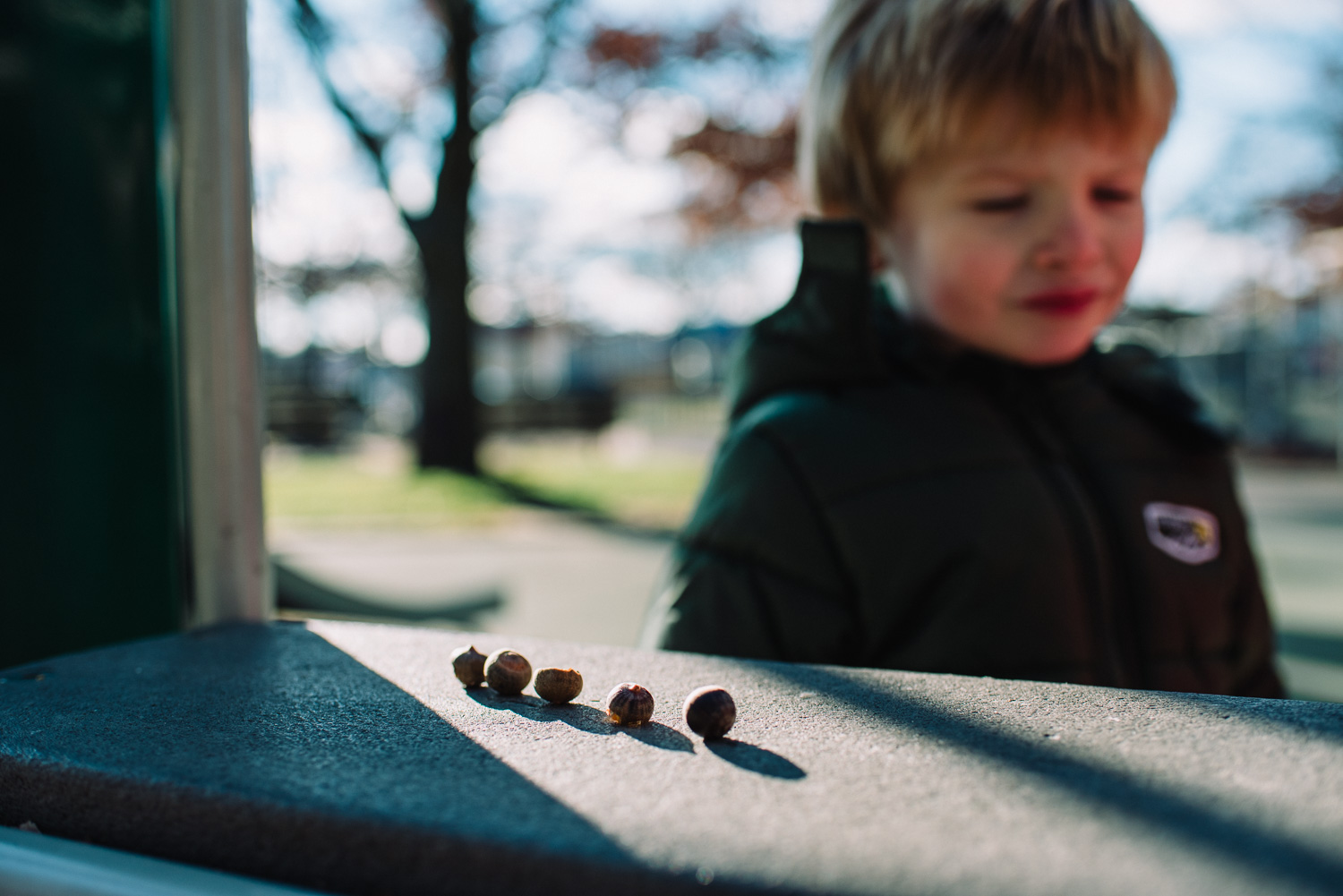 A line of acorns on the playground.