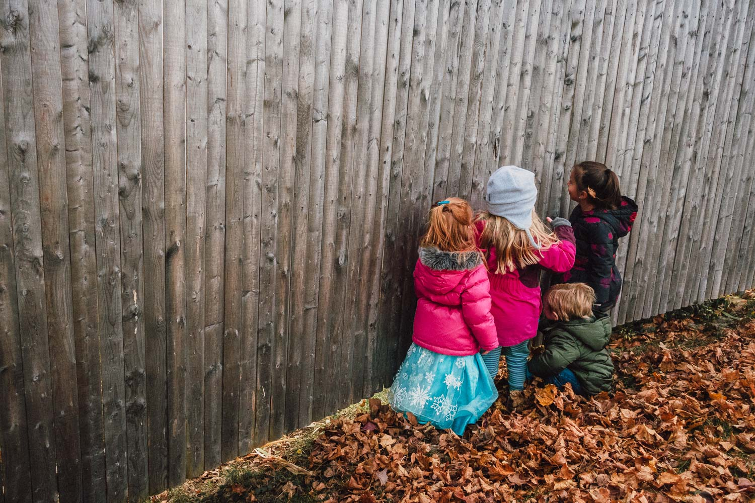 Kids peeking through a hole in the fence.
