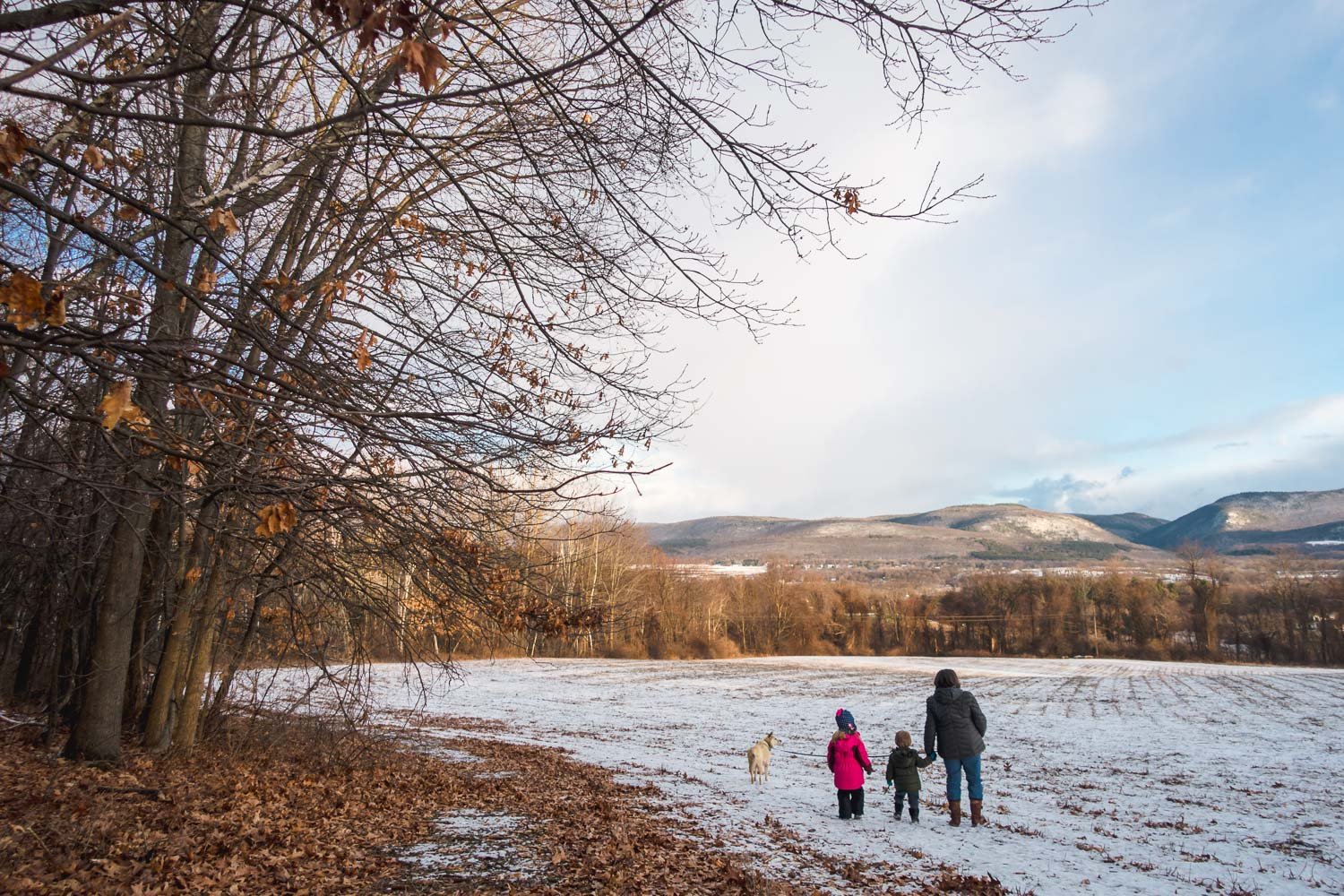 Children and grandmother walk across a snowy field.