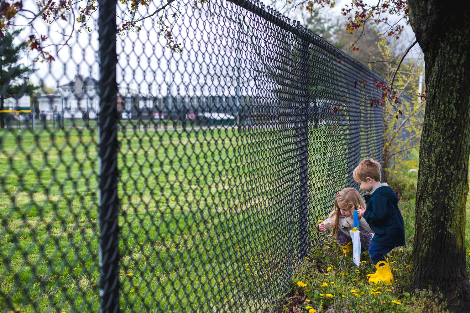Boy and girl picking flowers along a fence.