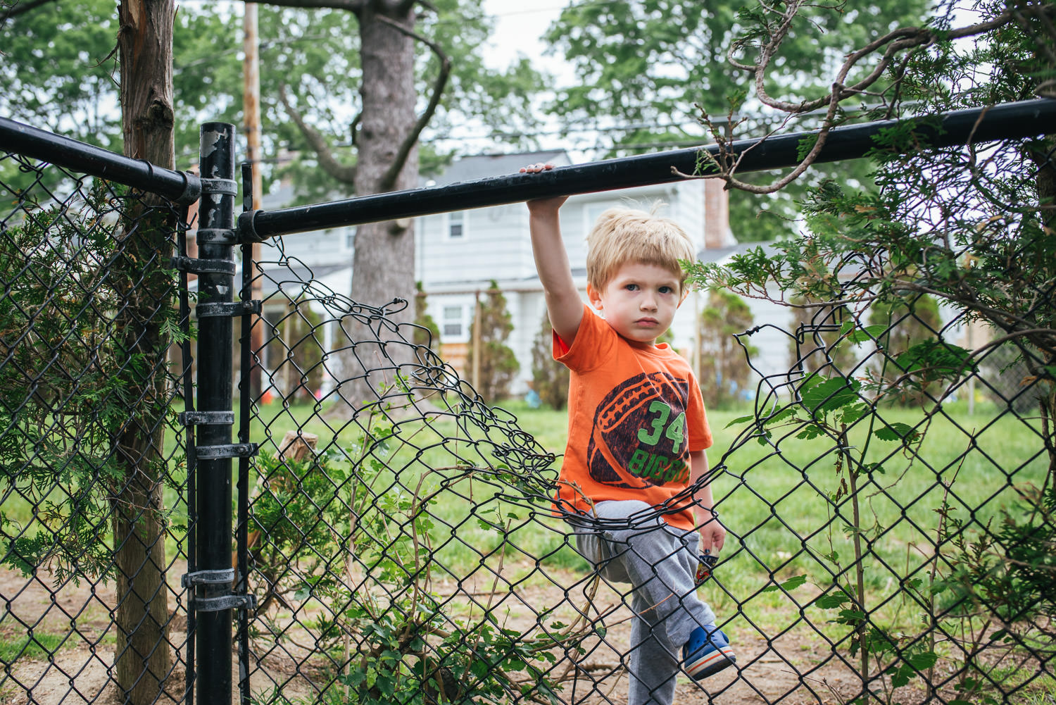 Little boy looks grumpy as he starts to climb through a hole in a fence.