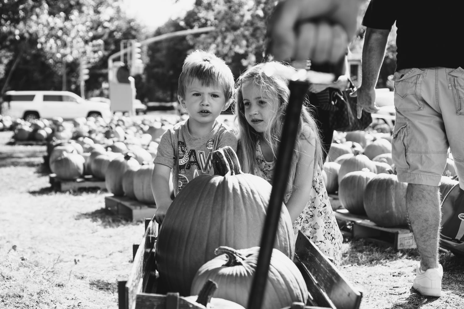 Kids push a wagon filled with pumpkins.