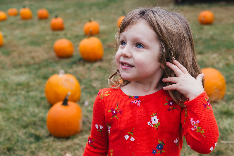 A little girl stands in a pumpkin patch.