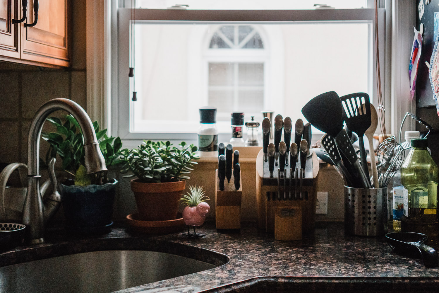 A kitchen counter in November.