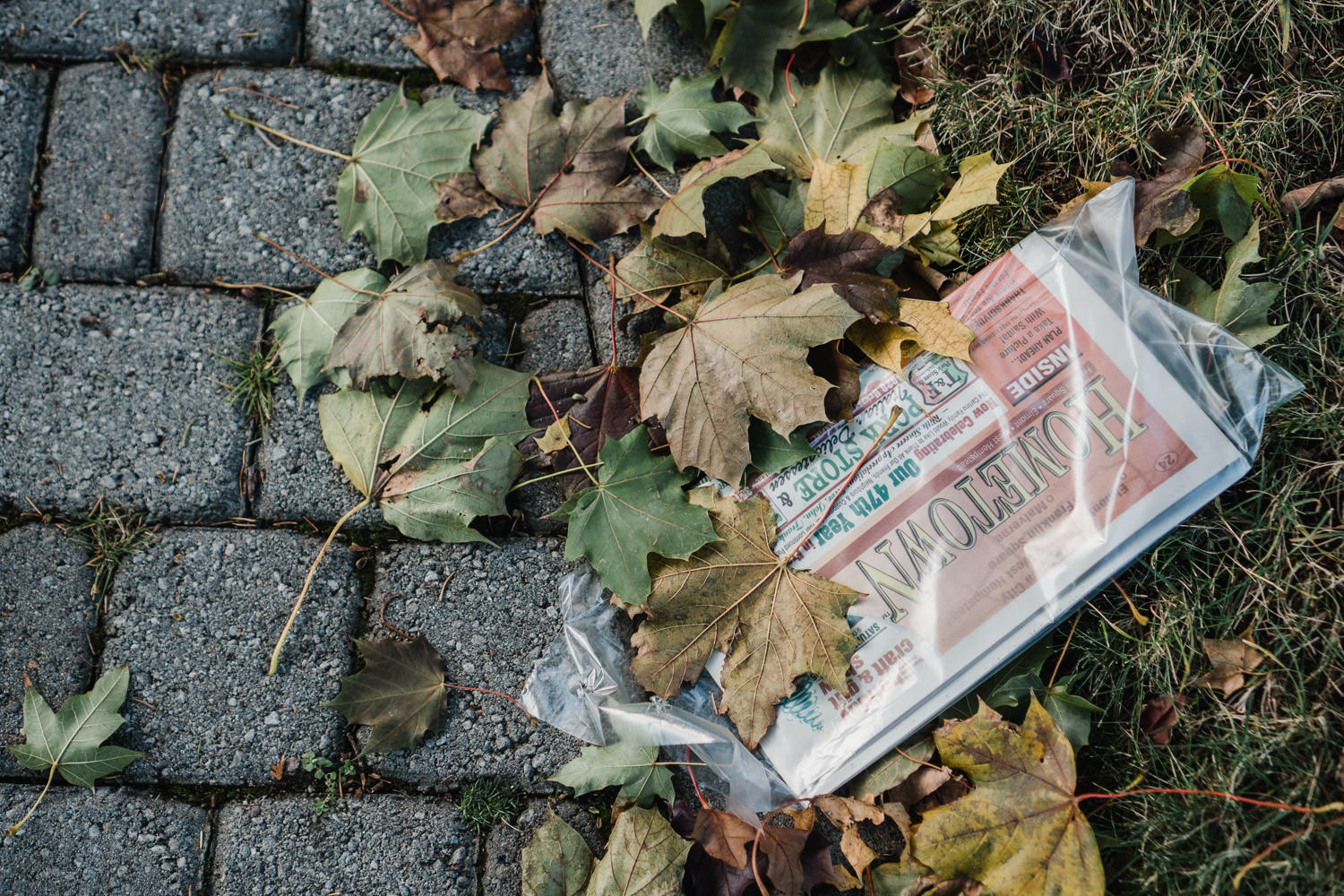 Newspaper covered with leaves.