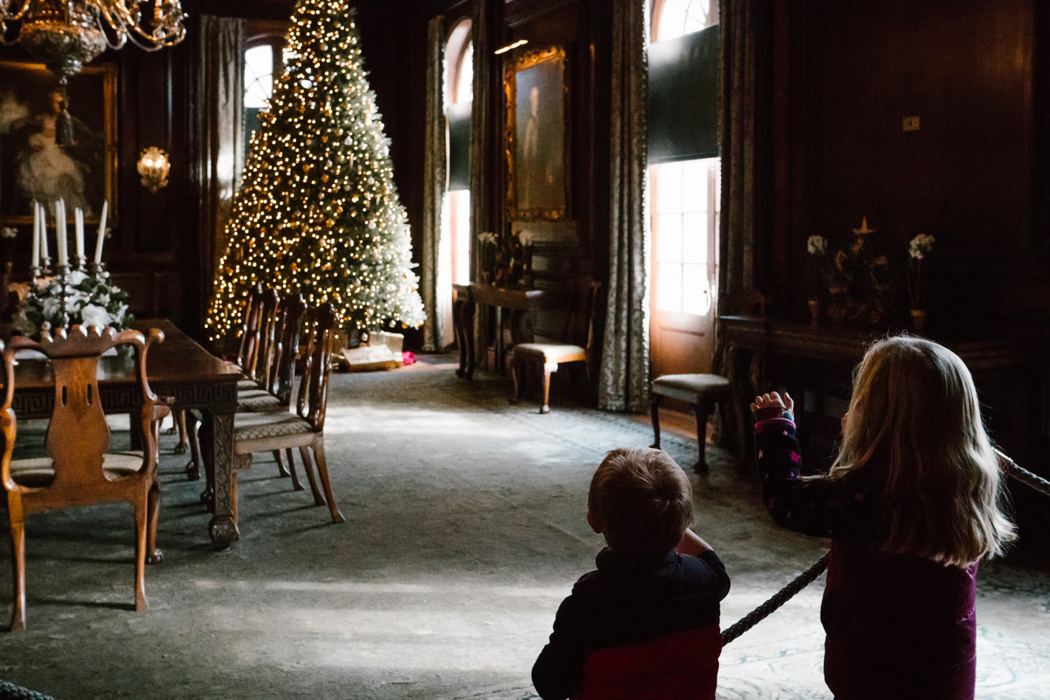 Children look at a Christmas tree at Old Westbury Gardens.