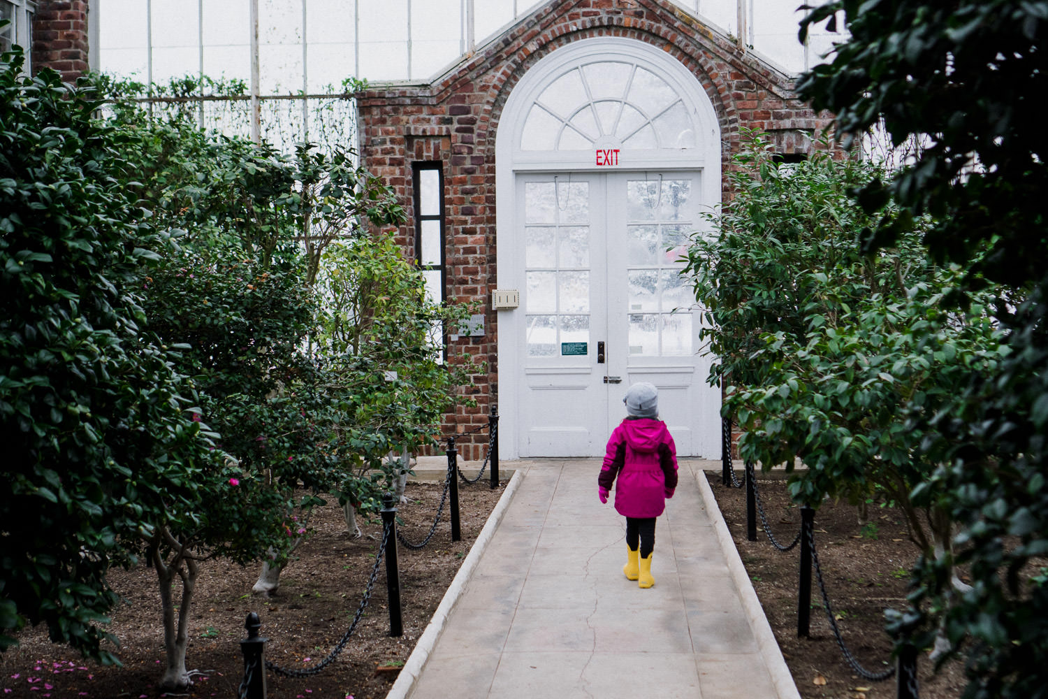 A little girl walks through a greenhouse at Planting Fields.