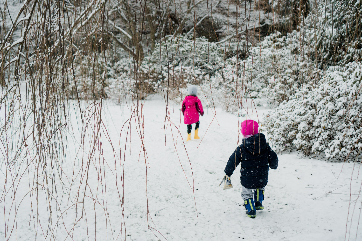 Kids trudge through the snow at Planting Fields.