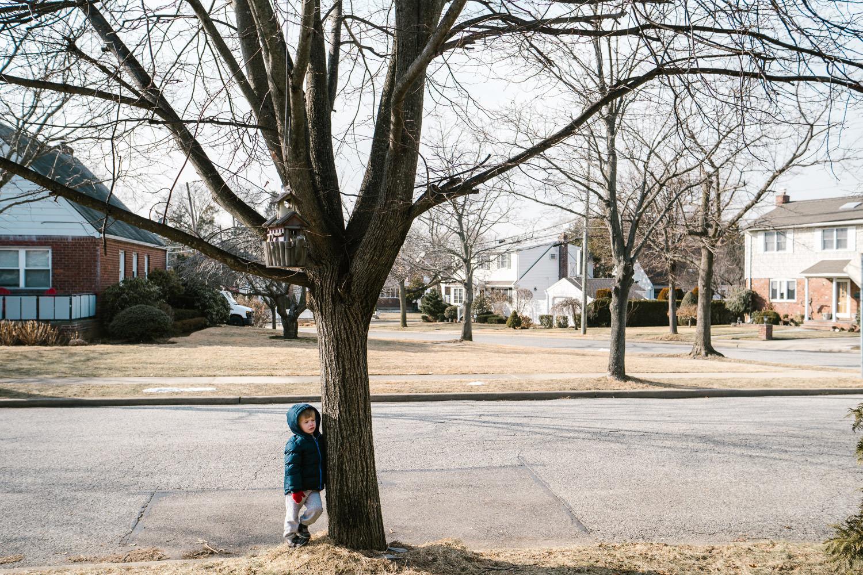 A little boy hugs a bare tree next to the street.