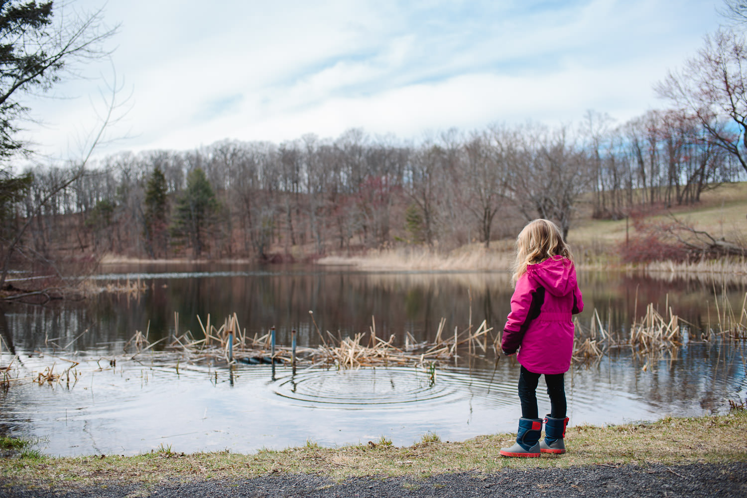 A little girl looks out at a pond.