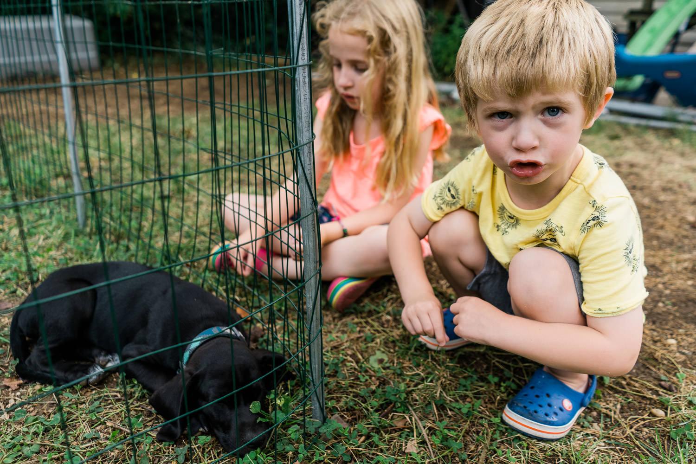 Two children sit next to a black lab puppy.