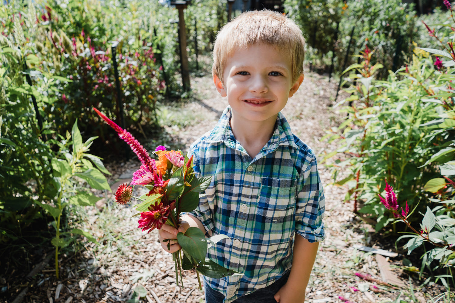 A little boy holds a bouquet of flowers at Restoration Farm.