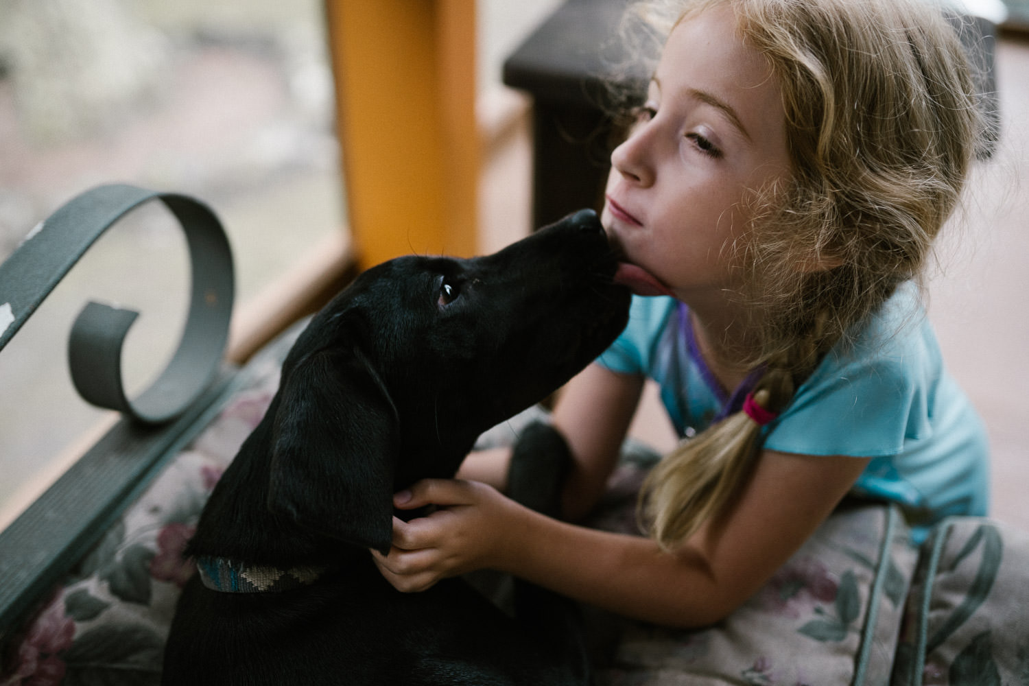 A dog licks a little girl's face.