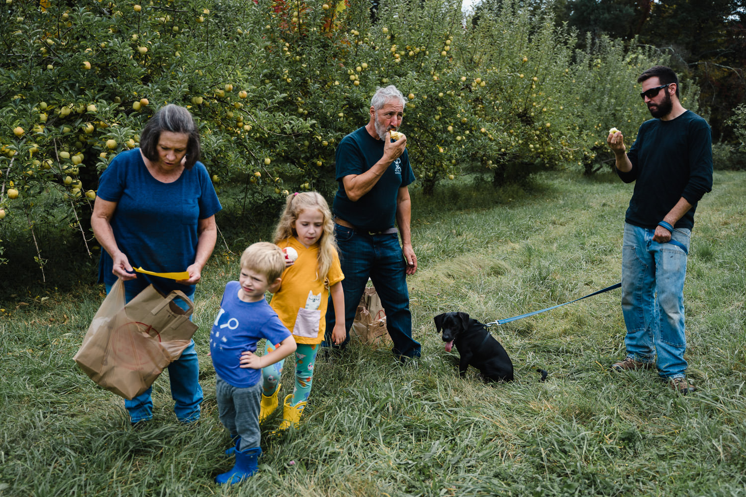 A family picks apples.