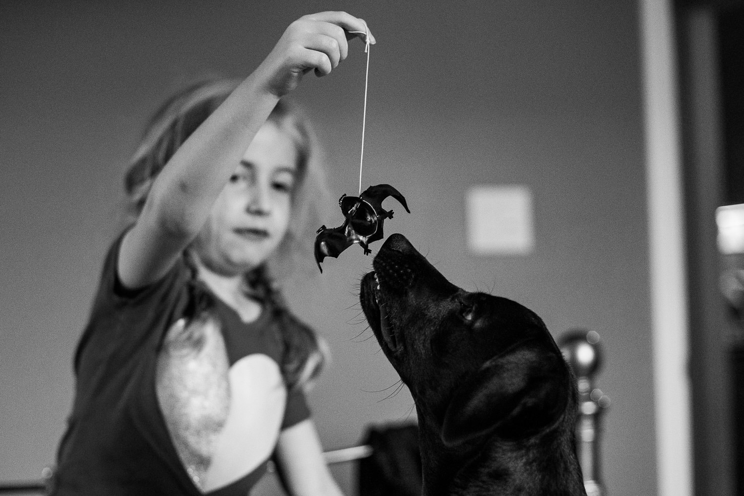 A little girl teases her dog with a plastic bat.