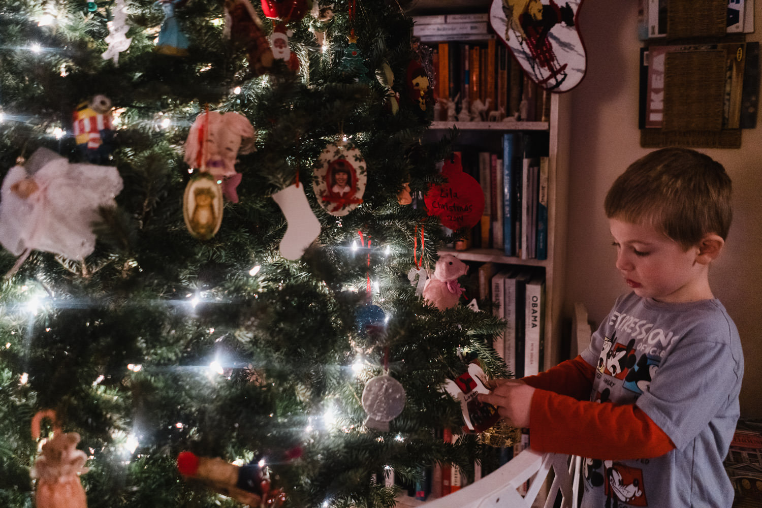 A little boy looks at the ornaments on a Christmas tree.