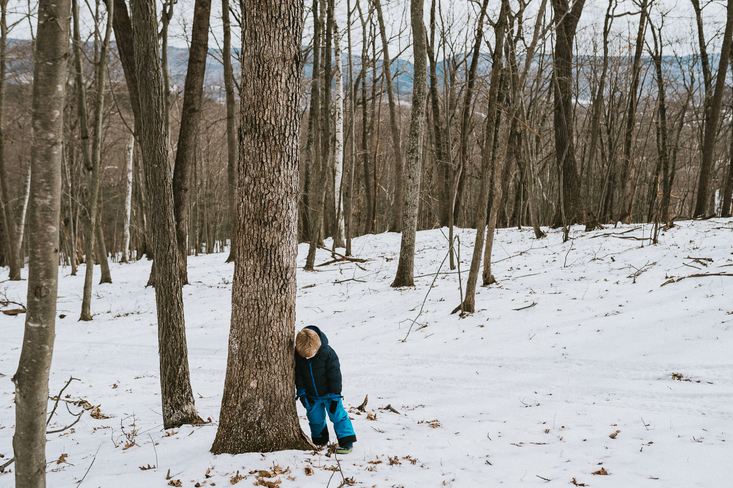 A little boy leans against a tree in the snow.