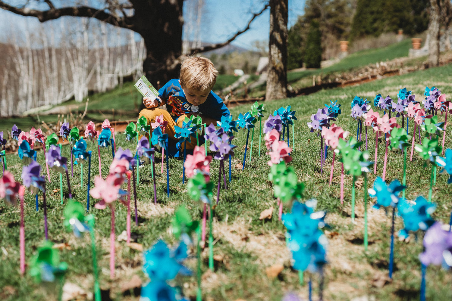A child crouches down near an installation of pinwheels.