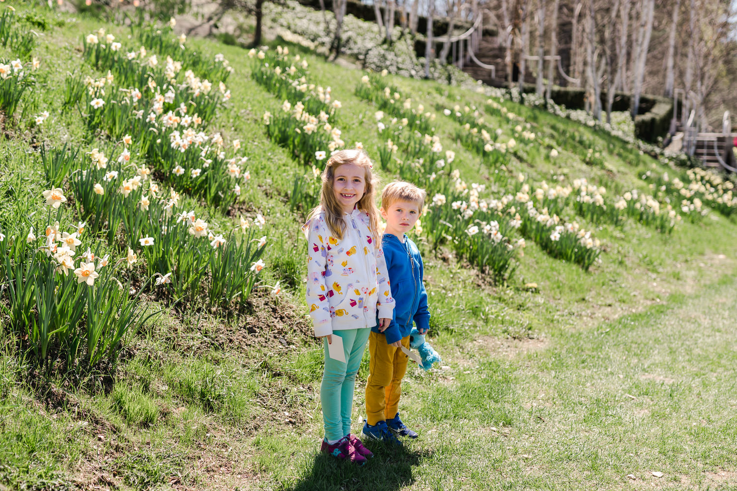 Two children at Naumkeag by the daffodils.