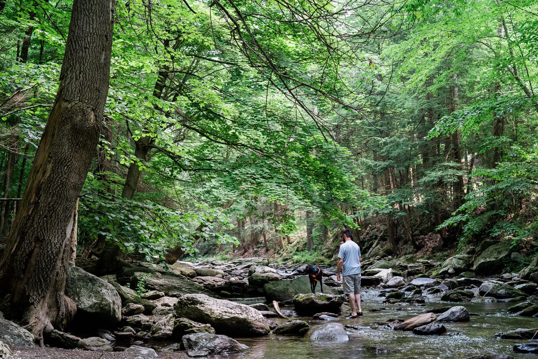 A man and his dog at Bash Bish Falls.