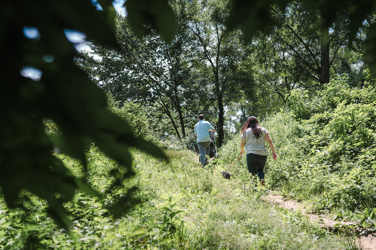 A couple walks up a hill in Central Park.