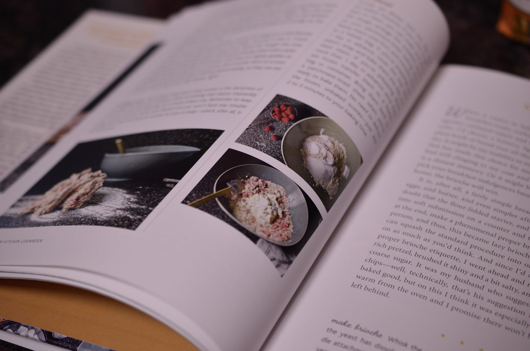 THE cookbook. I highly recommend it
