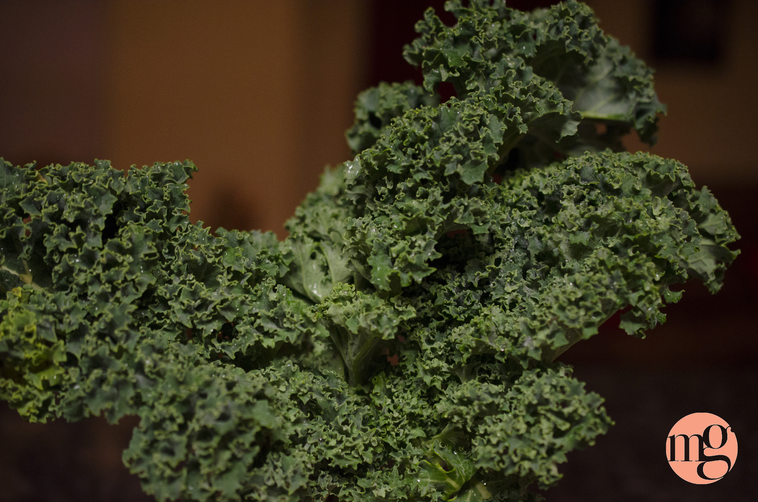 I've cooked with kale no fewer than 3 times this week. It's amazing, and so nutritious
