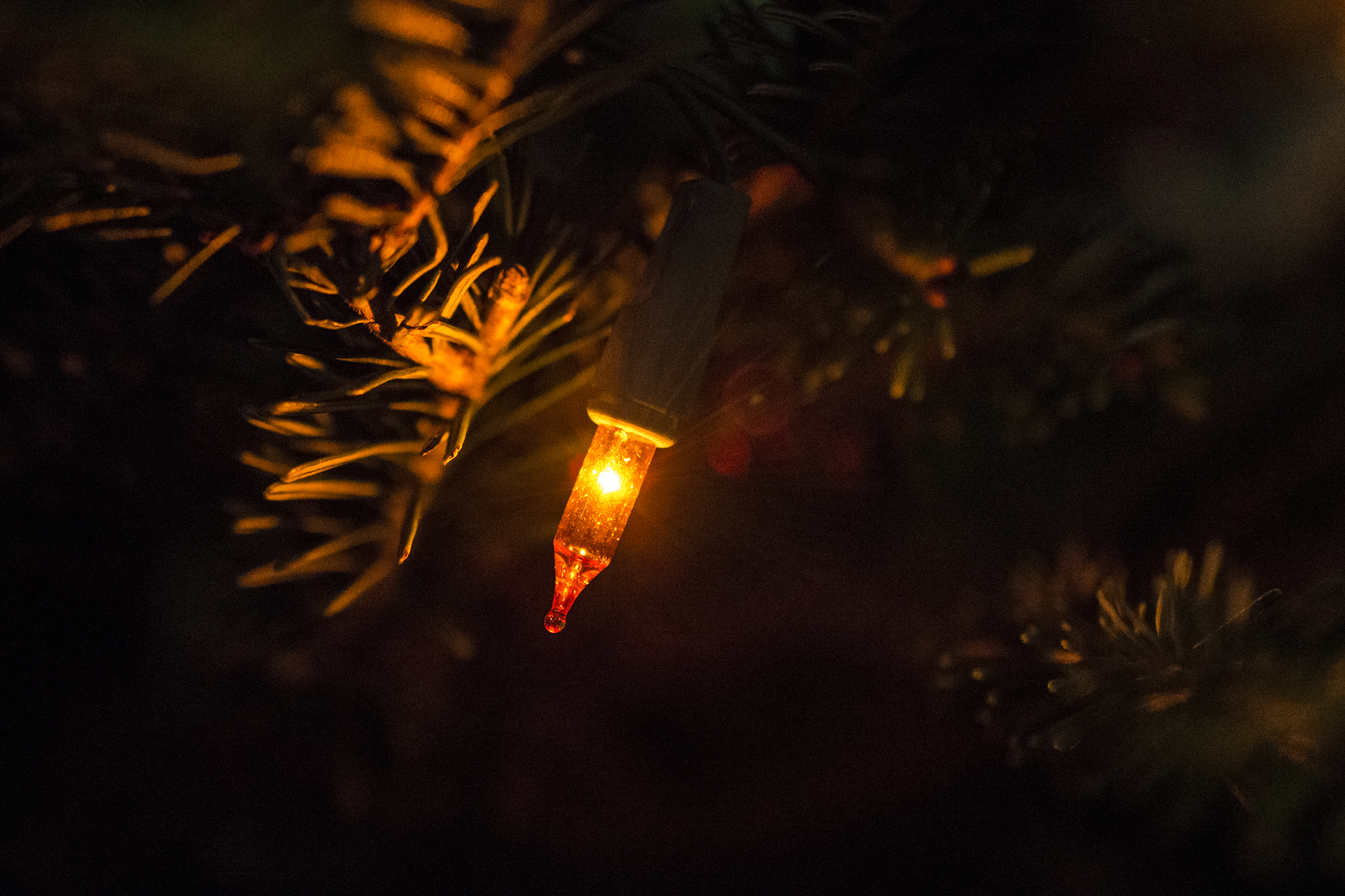 Orange Christmas light