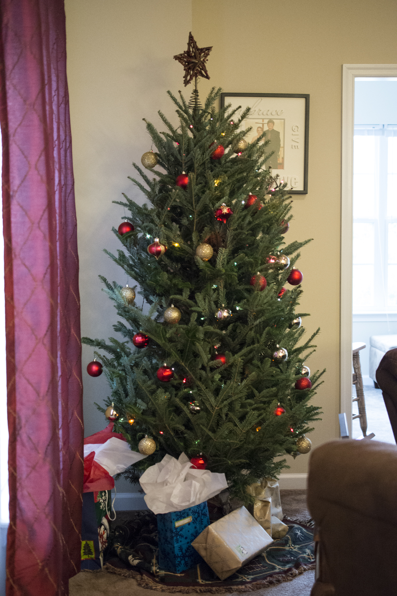 Real Christmas tree in the living room