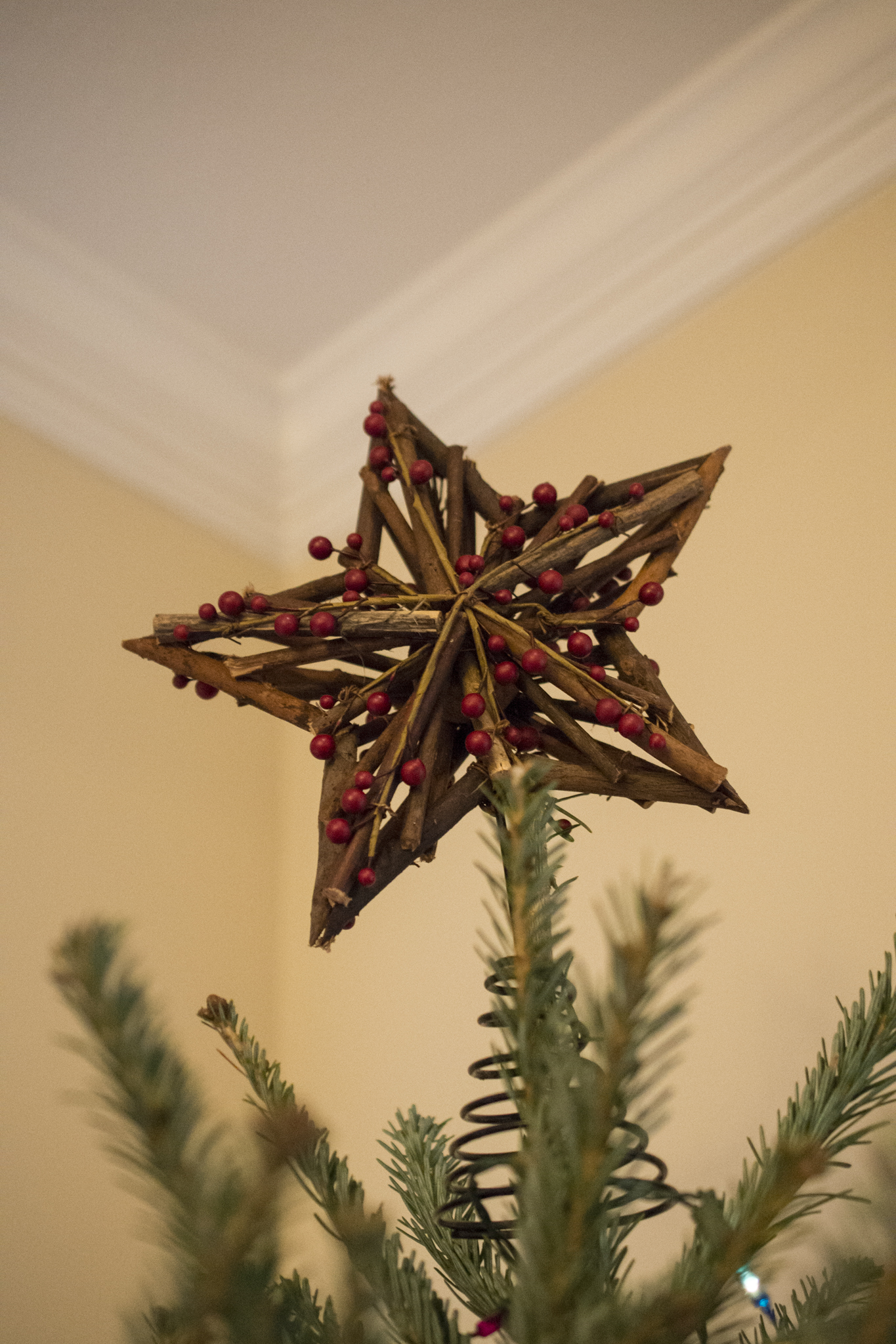 Wood & cranberry Christmas tree star