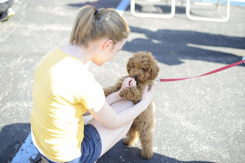Vinton Dogwood Festival in April 2014 | Maria Grace Photography