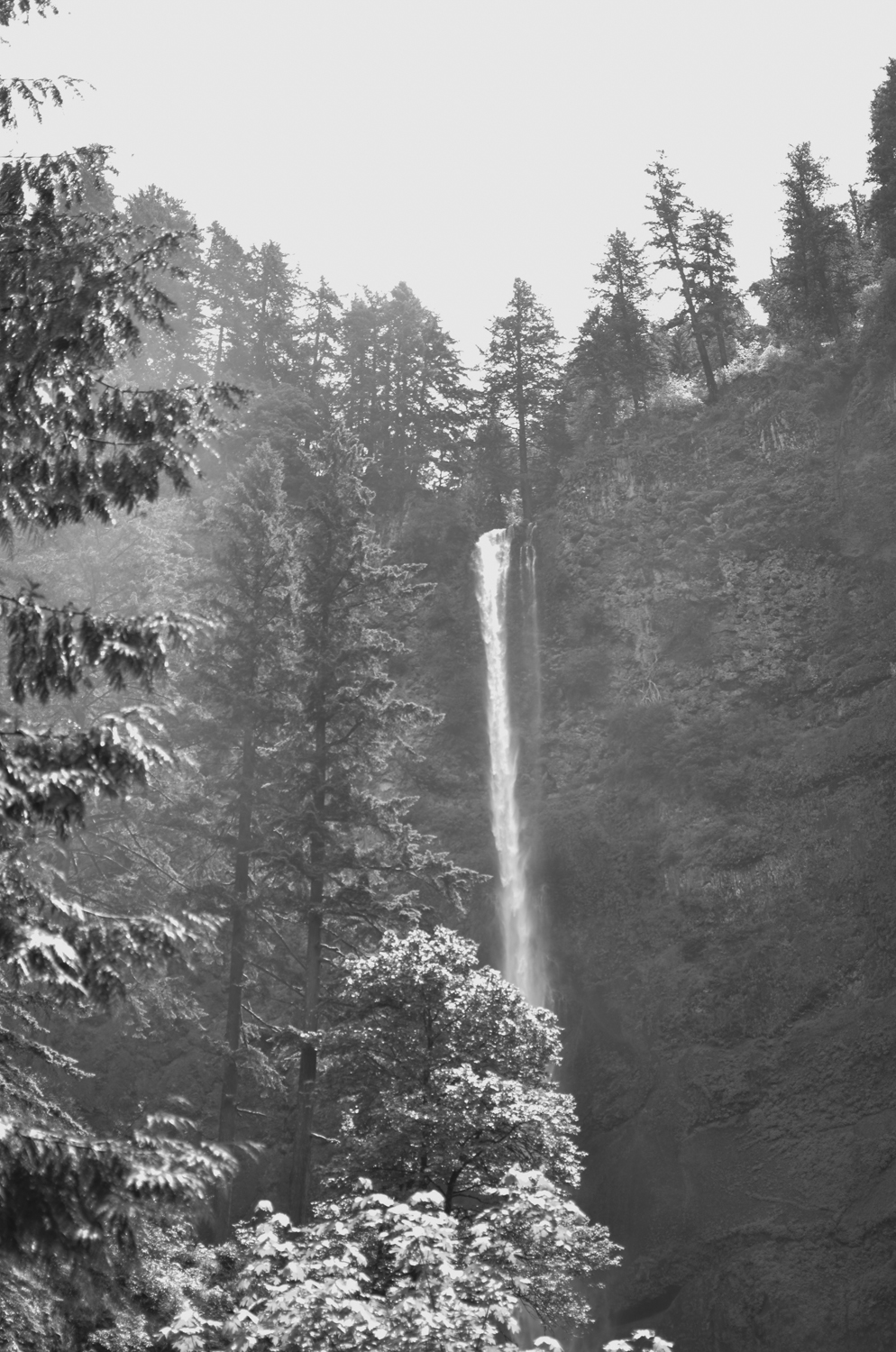 Gorgeous black and white at Multnomah Falls (waterfalls) | Maria Grace Photography