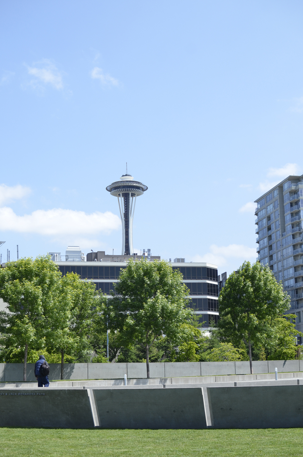 View of the Seattle Space Needle from Olympic Sculpture Park | Maria Grace Photography