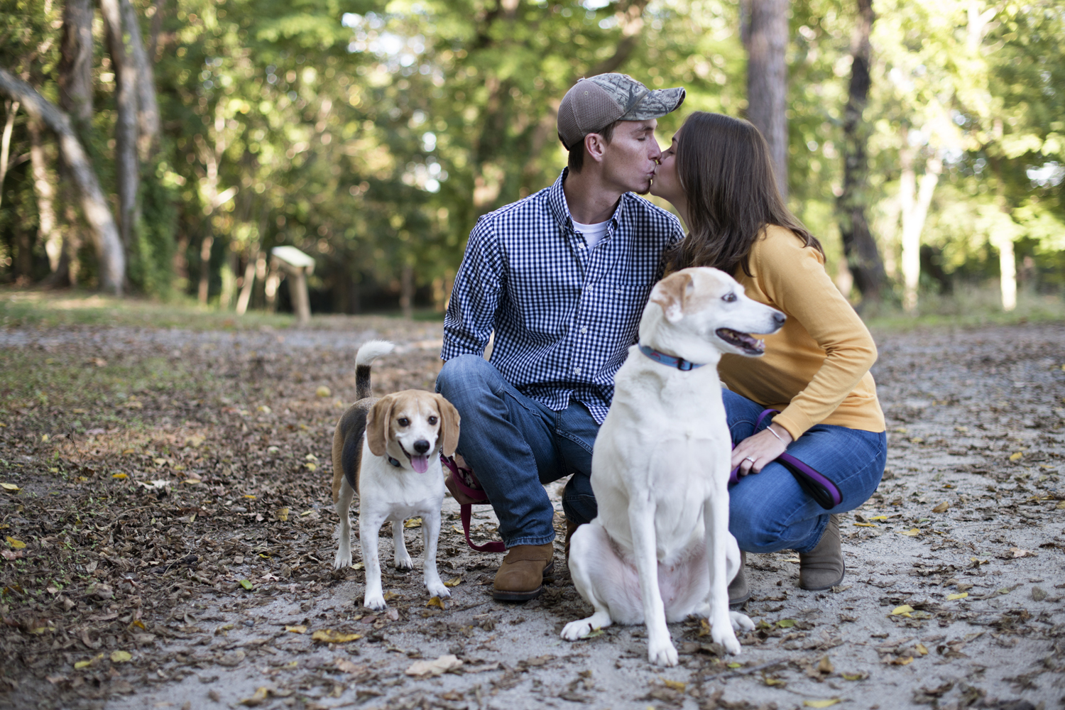 Newlyweds with their dogs for family pictures in a park in the fall