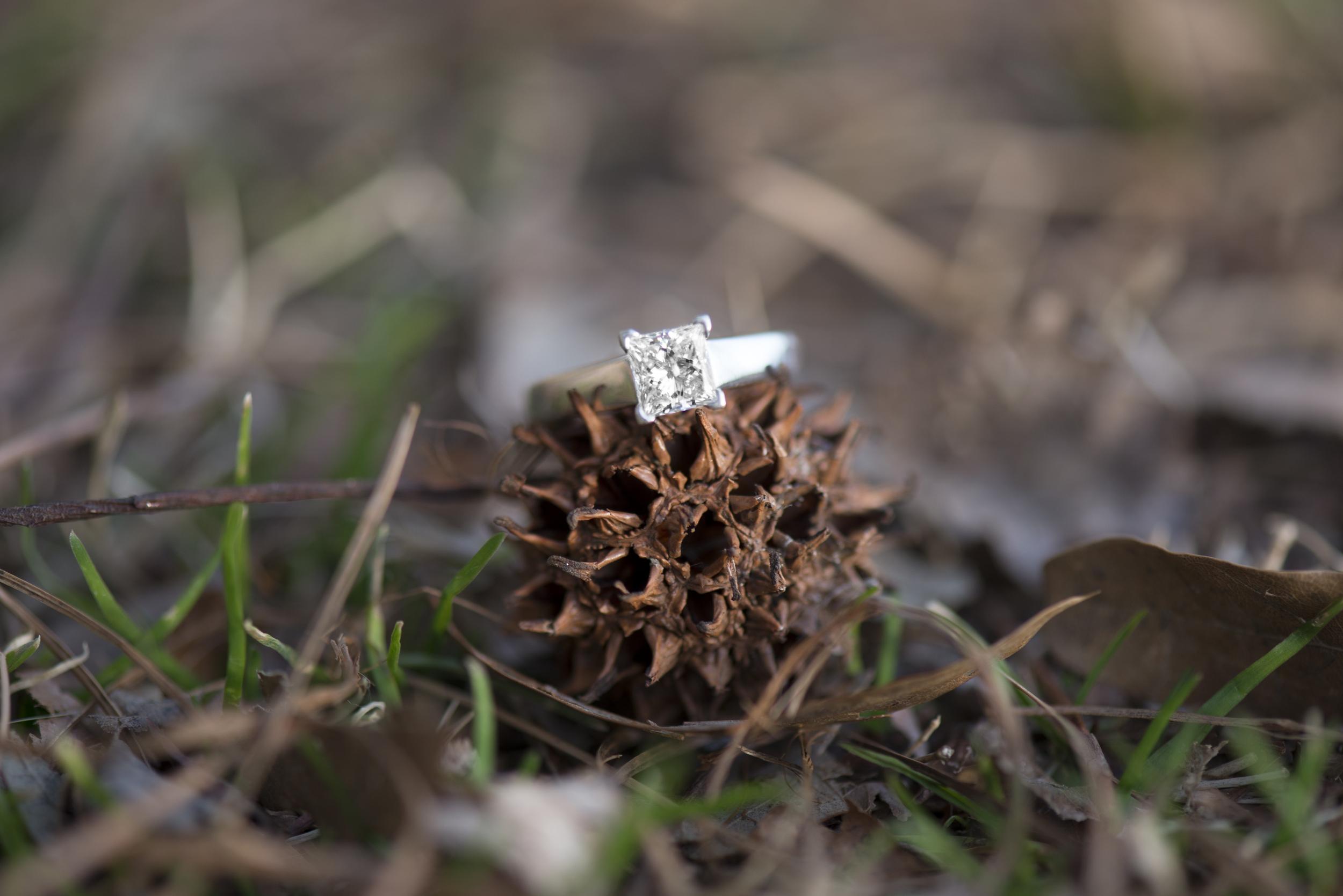 Winter Ring Shot