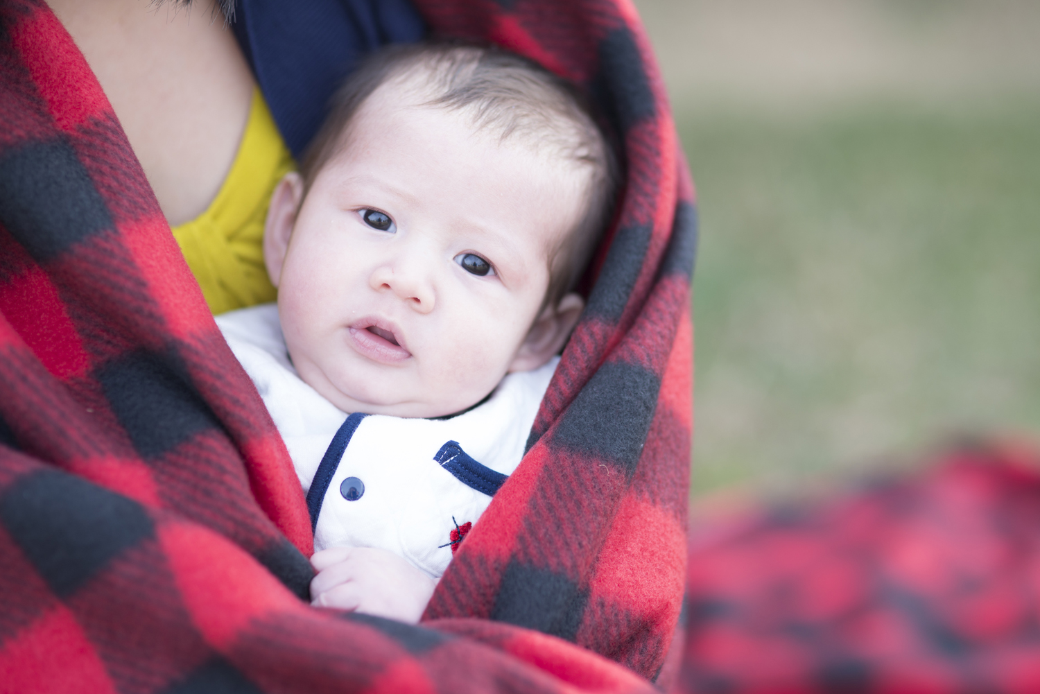 Newborn wrapped in plaid blanket