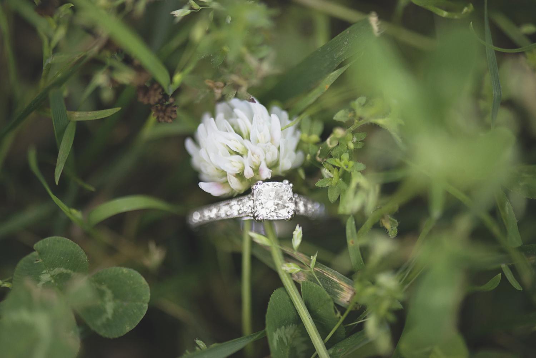 Windsor Castle Park Engagement Session in Smithfield, Virginia | Dandelion ring shot