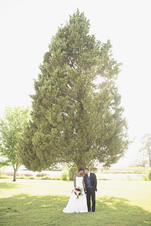 Bayvue_Estate_Gloucester_Virginia_Wedding_Photo_20