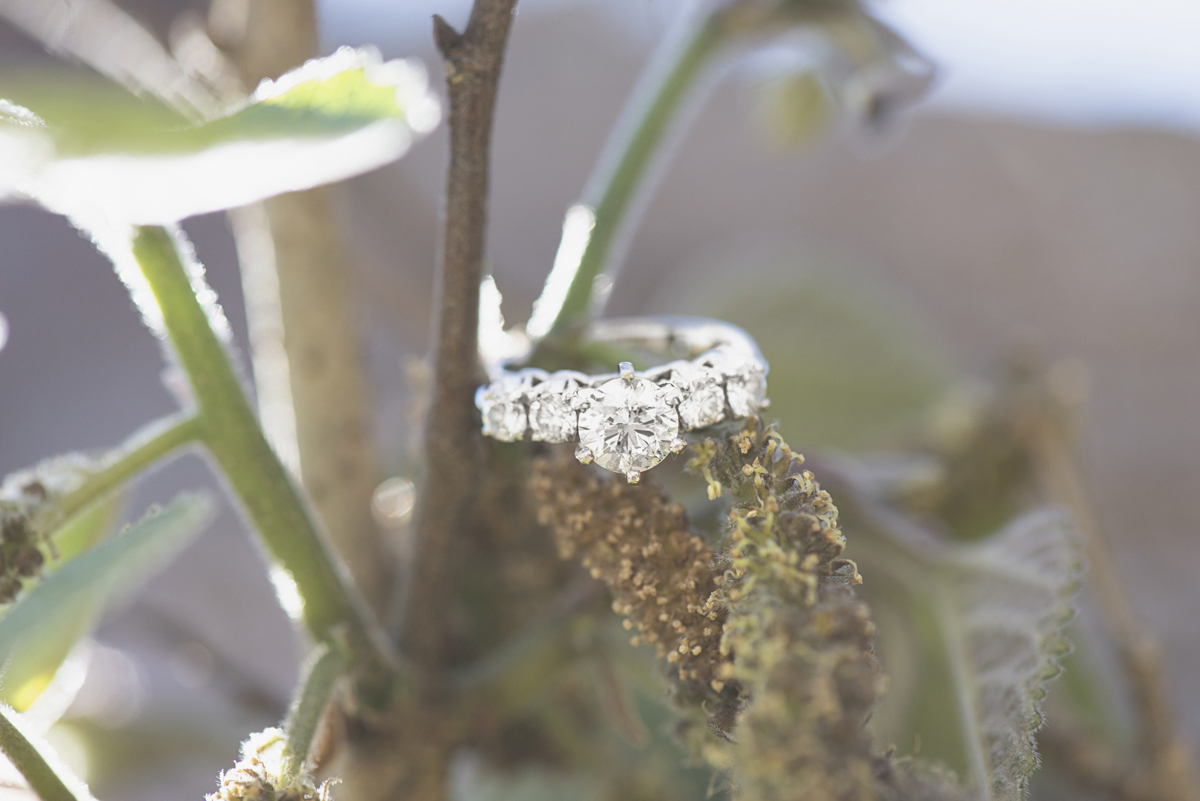 Stunning engagement ring picture