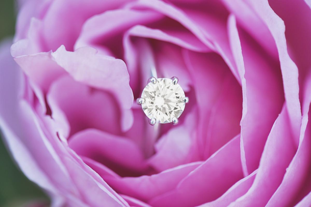 Pink Rose Engagement Ring Shot