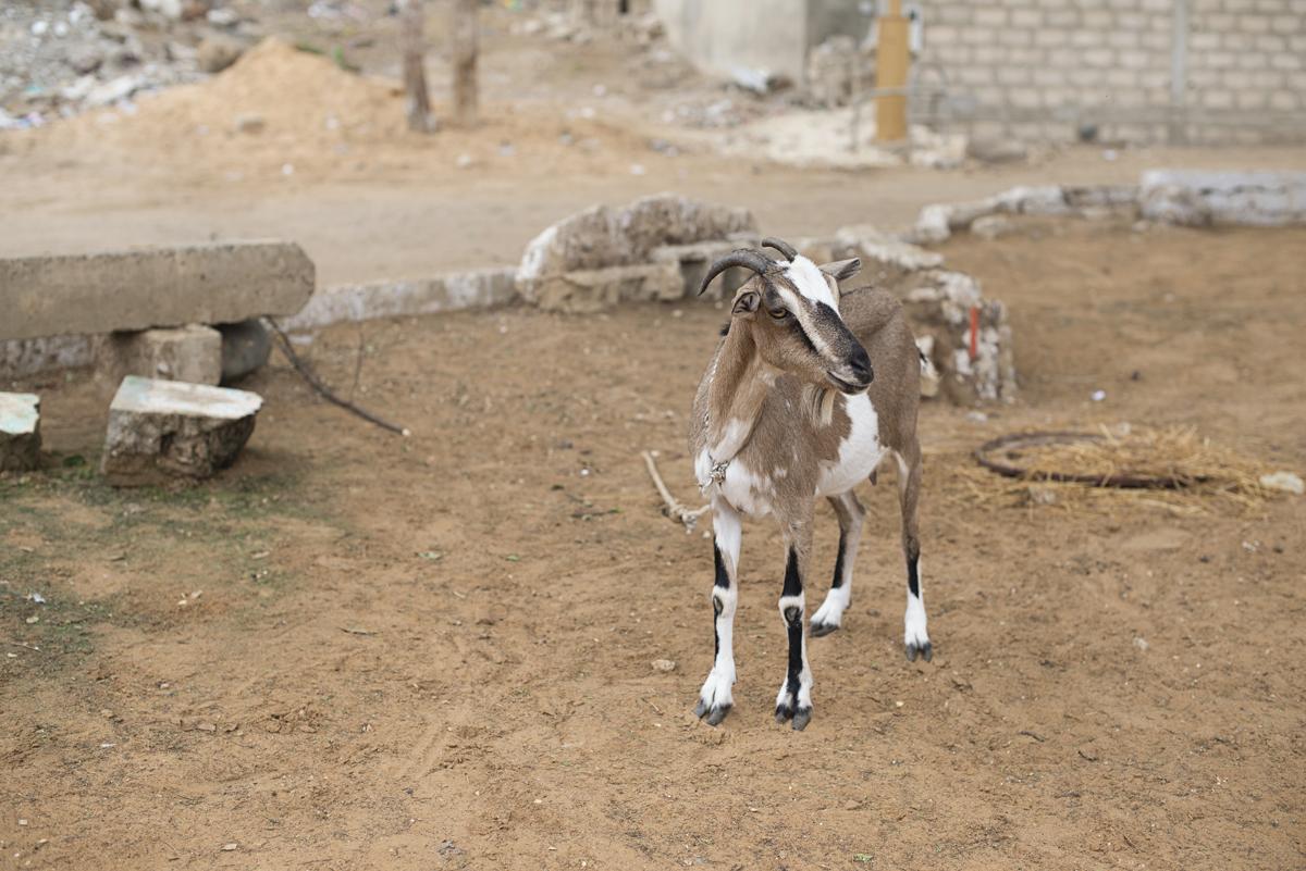 072416_West_Africa_06.jpg