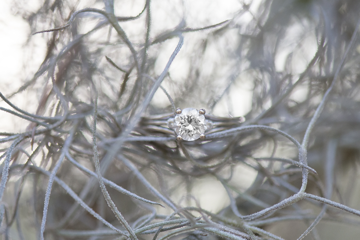 Spanish Moss Engagement Ring Picture