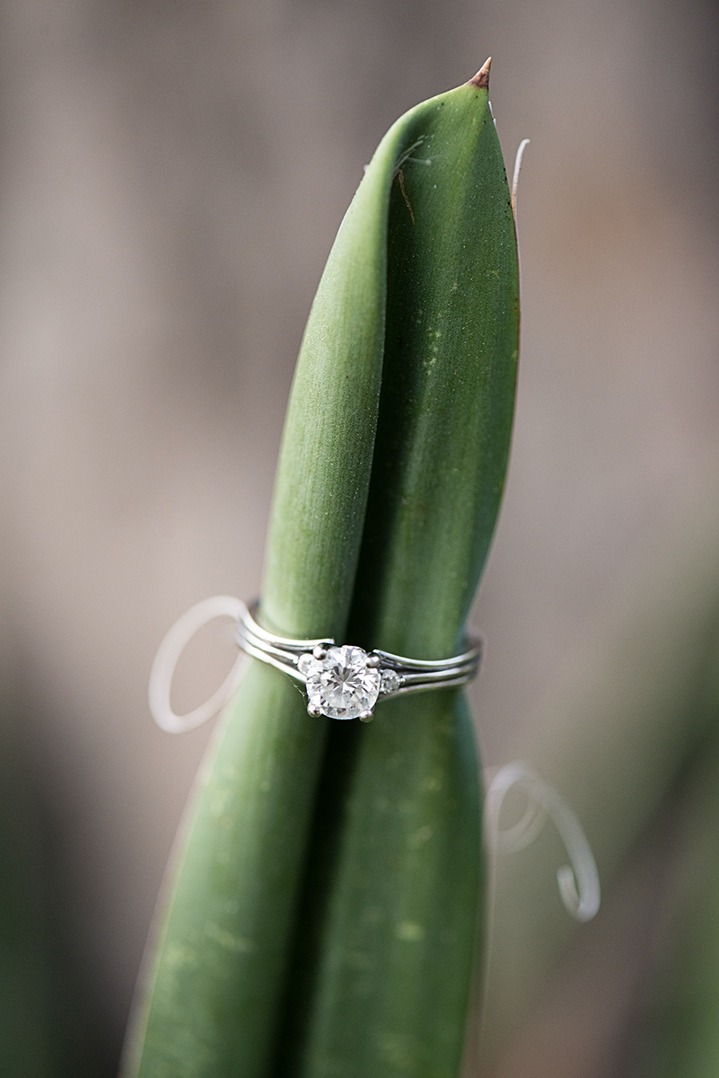 Creative Grass Engagemen Ring Shot
