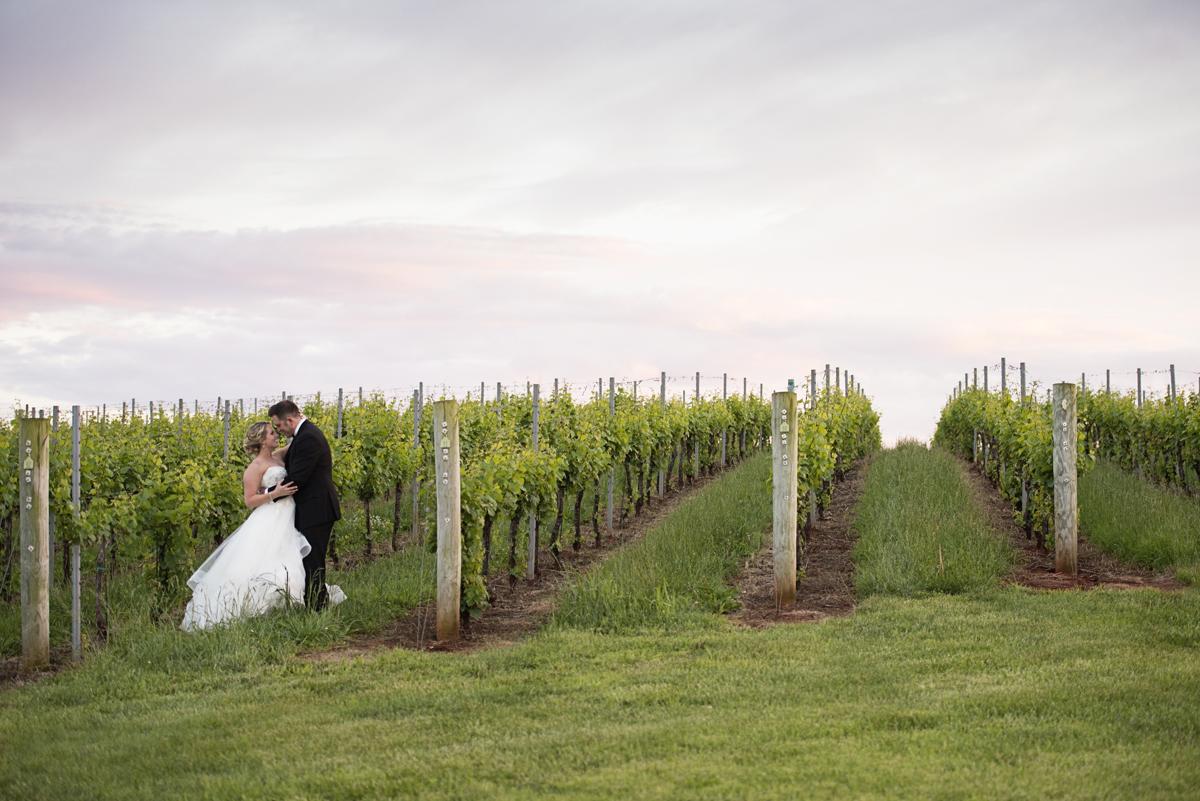Albemarle Estate at Trump Winery Wedding   Bride and Groom Sunset Vineyard Portraits
