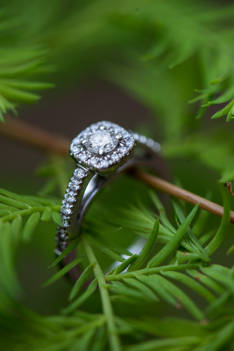 Greenery Ring Shot