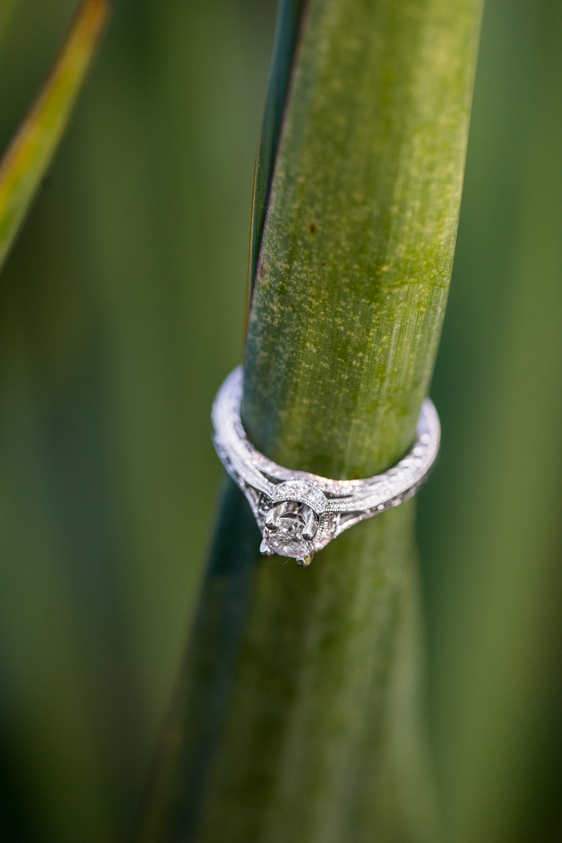 Green Grass Engagement Ring Picture