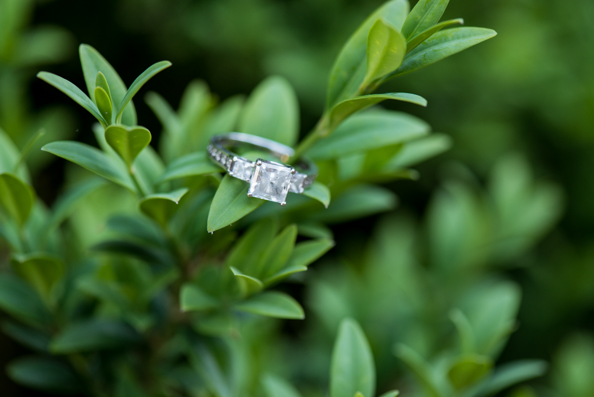Ring Picture with Greenery