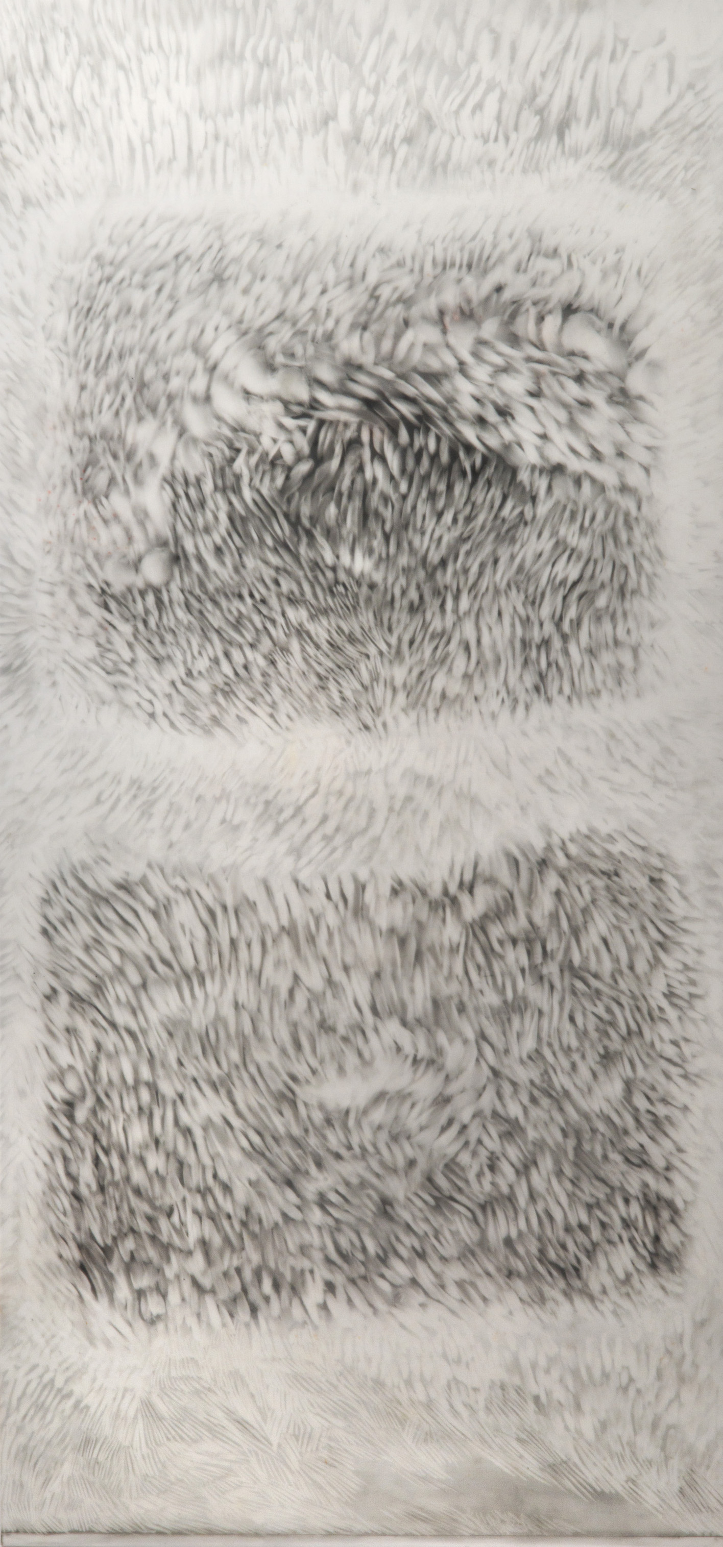 Observed and Recorded Permutation of the Holy Spirit I (9.625 inches x 20.75 inches-pastel and graphite erasings on duralar)