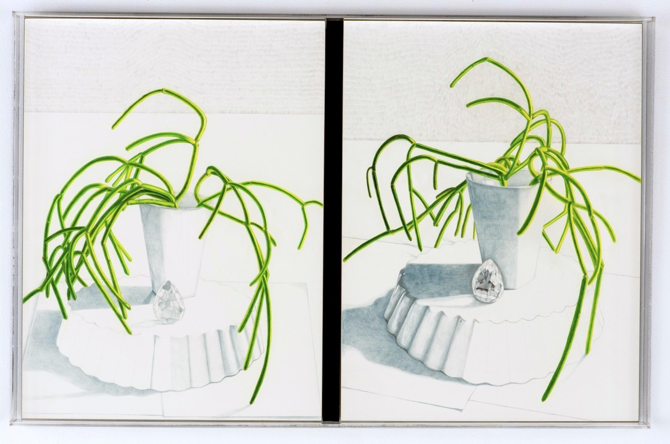 CONVERSION: PORTRAIT OF MIK . KIM  prismacolor pencil, graphite on clayboard in plexiglass frame  26in. X 48 in.